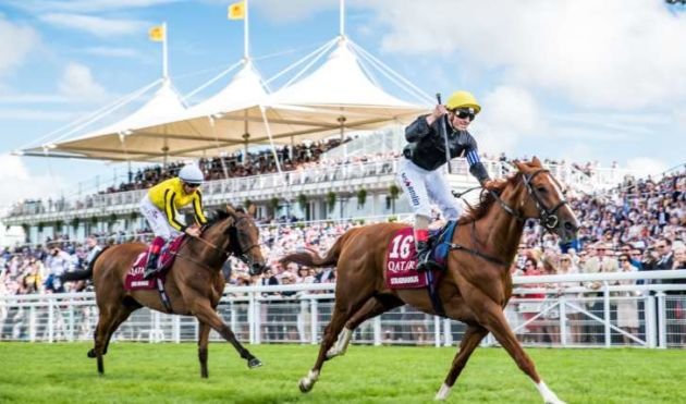 Qatar Glorious Goodwood Raceday Hospitality