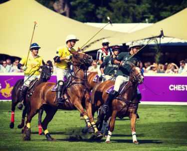 chestertons polo in the park VIP Corporate Sports VIP Hospitality